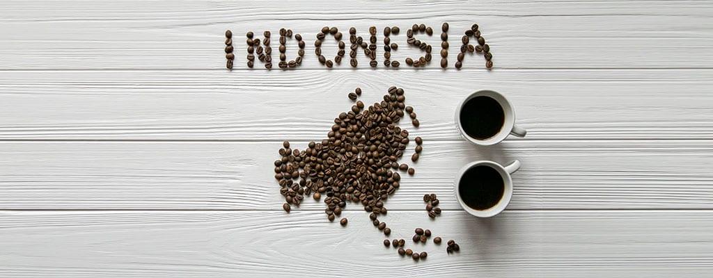 אינדונזיה רשומה מפולי קפה
