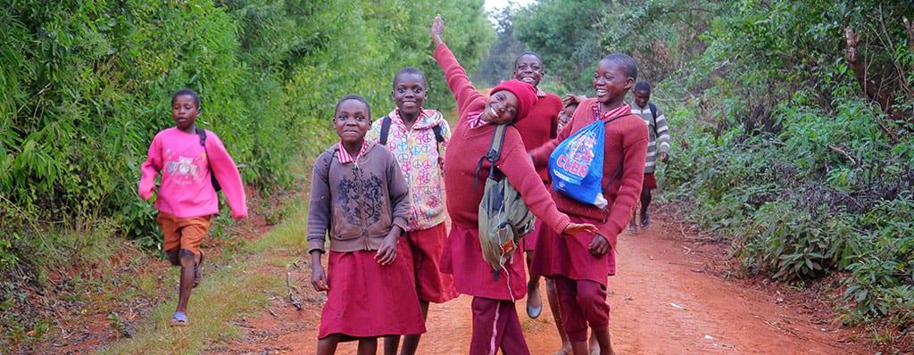 זימבבואה נוף מקומי